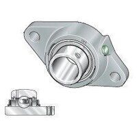 RCJTY25 25mm INA 2 Bolt Flanged Bearing