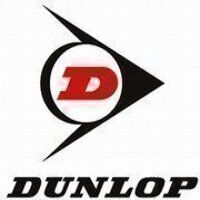 SPA2307 Wedge Belt (Dunlop)
